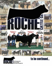ROCHE CATTLE CO FLYER_PAC