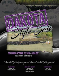 south-dakokta-style-sale_cover